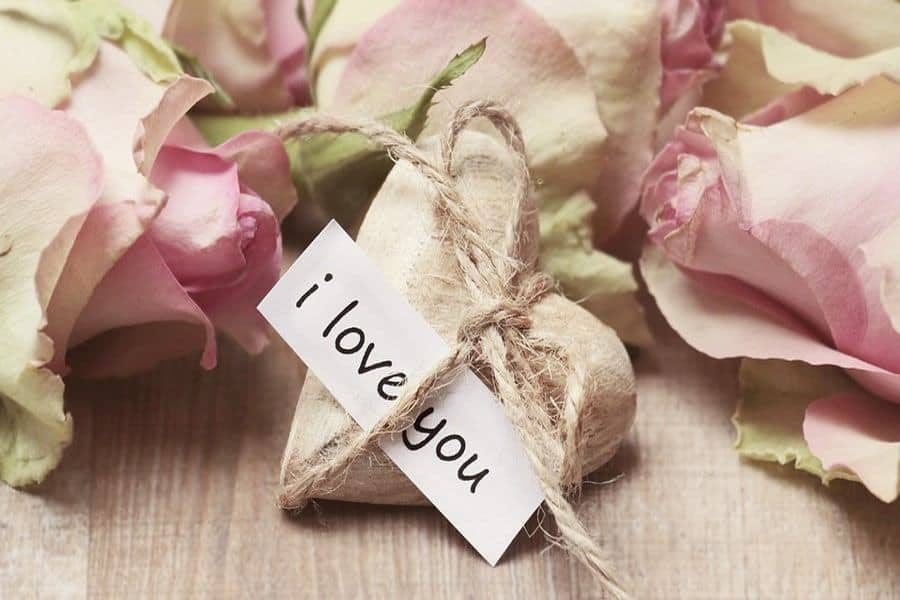 I Am in Love With You Quotes